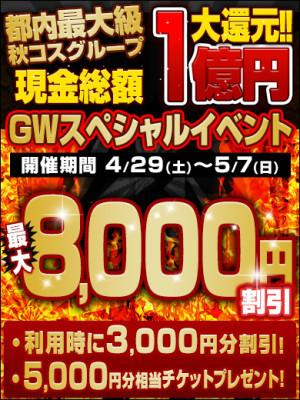 GW2017_8000円割引_390-520